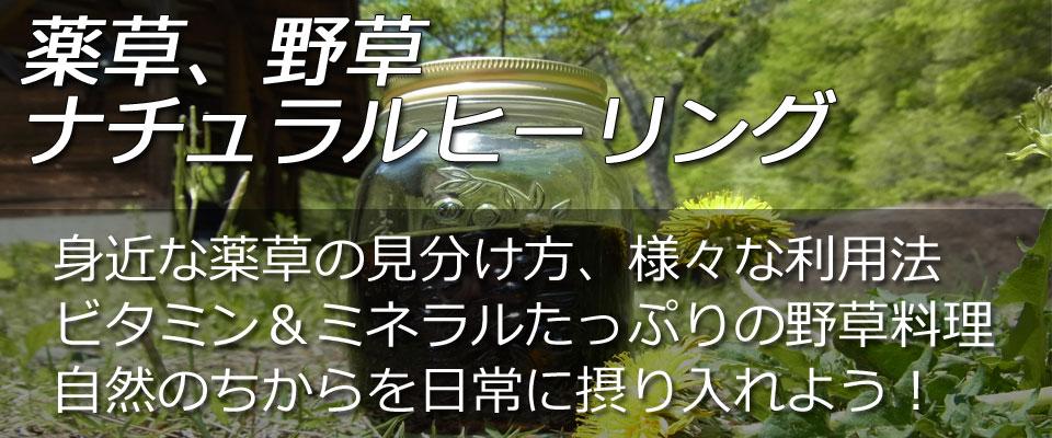 yakusouhi2