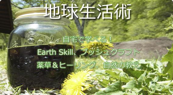 地球生活術